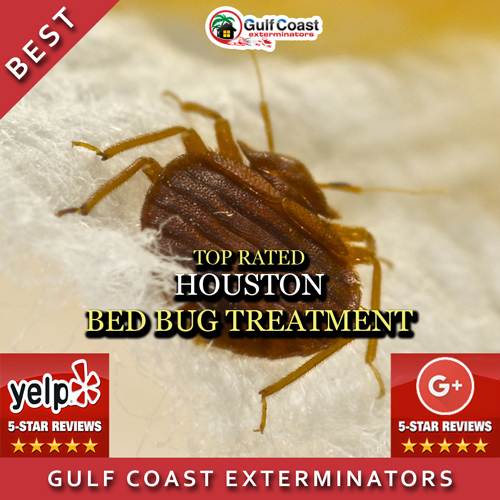 Gulf Coast Exterminators performs effective reasonably priced bed bug treatment for Houston, TX and surrounding areas.