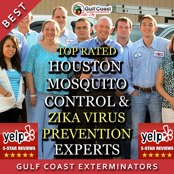 Prevent zika virus by using our highly effective mosquito control services and misting systems.