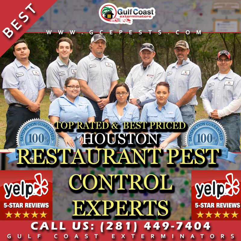 Houston Restaurant Pest Control Company - Gulf Coast Exterminators