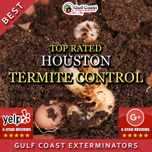 Gulf Coast Exterminators performs effective reasonably priced Termite Control for Houston, TX and surrounding areas.