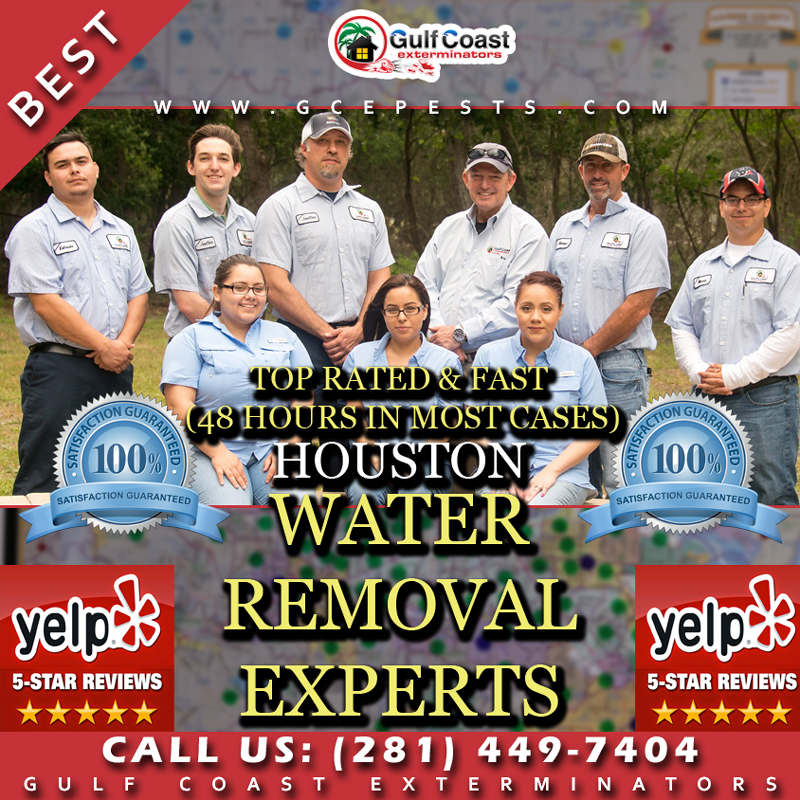 Houston Fast Flood Water Removal (48 Hours), Quick Dry Flood Services and Water Damage Home Repair Company - Gulf Coast Exterminators
