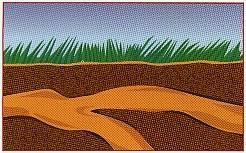 termite-treatment-houston-tx-3
